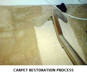 CARPET RESTORATION PROCESS