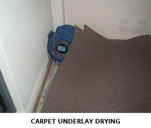 CARPET UNDERLAY DRYING